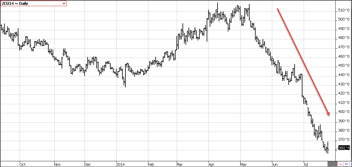 Снижение цены на кукурузу