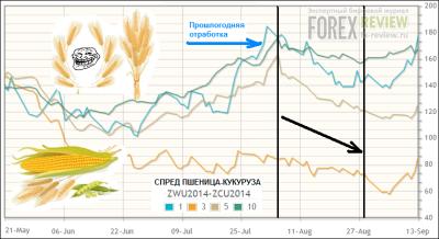 Спред пшеница-кукуруза, август 2014