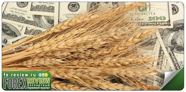 Новости зернового рынка