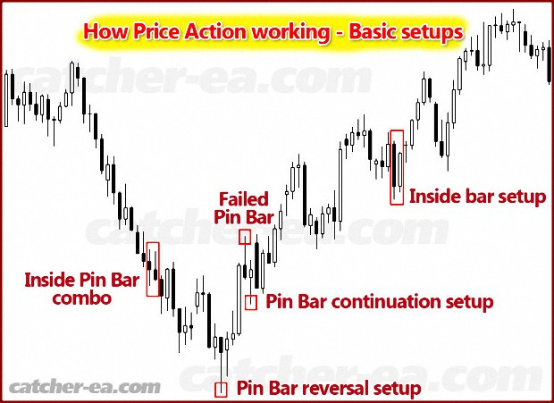 Catcher EA price action
