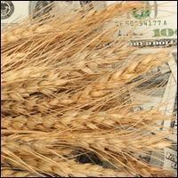 Зерновой рынок